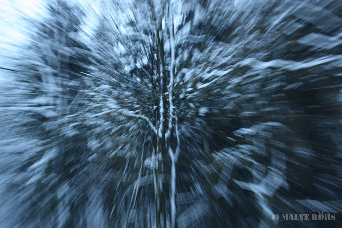 Picture of a snowy wood taken while zooming in