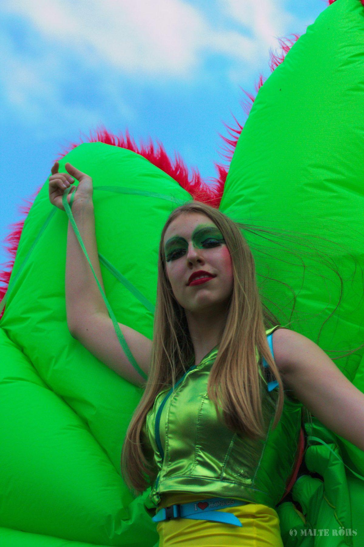 Carnival der Kulturen 2015 in Bielefeld, Germany